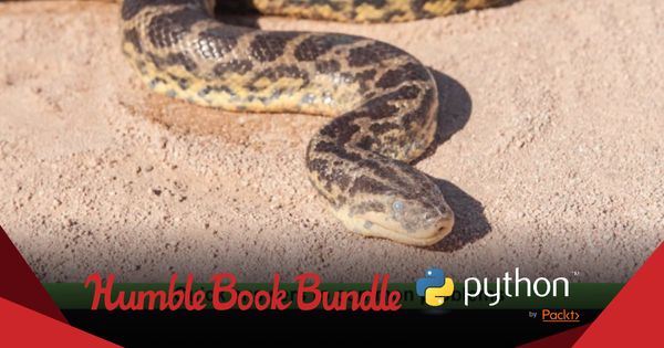 Start the year with this new Python book bundle